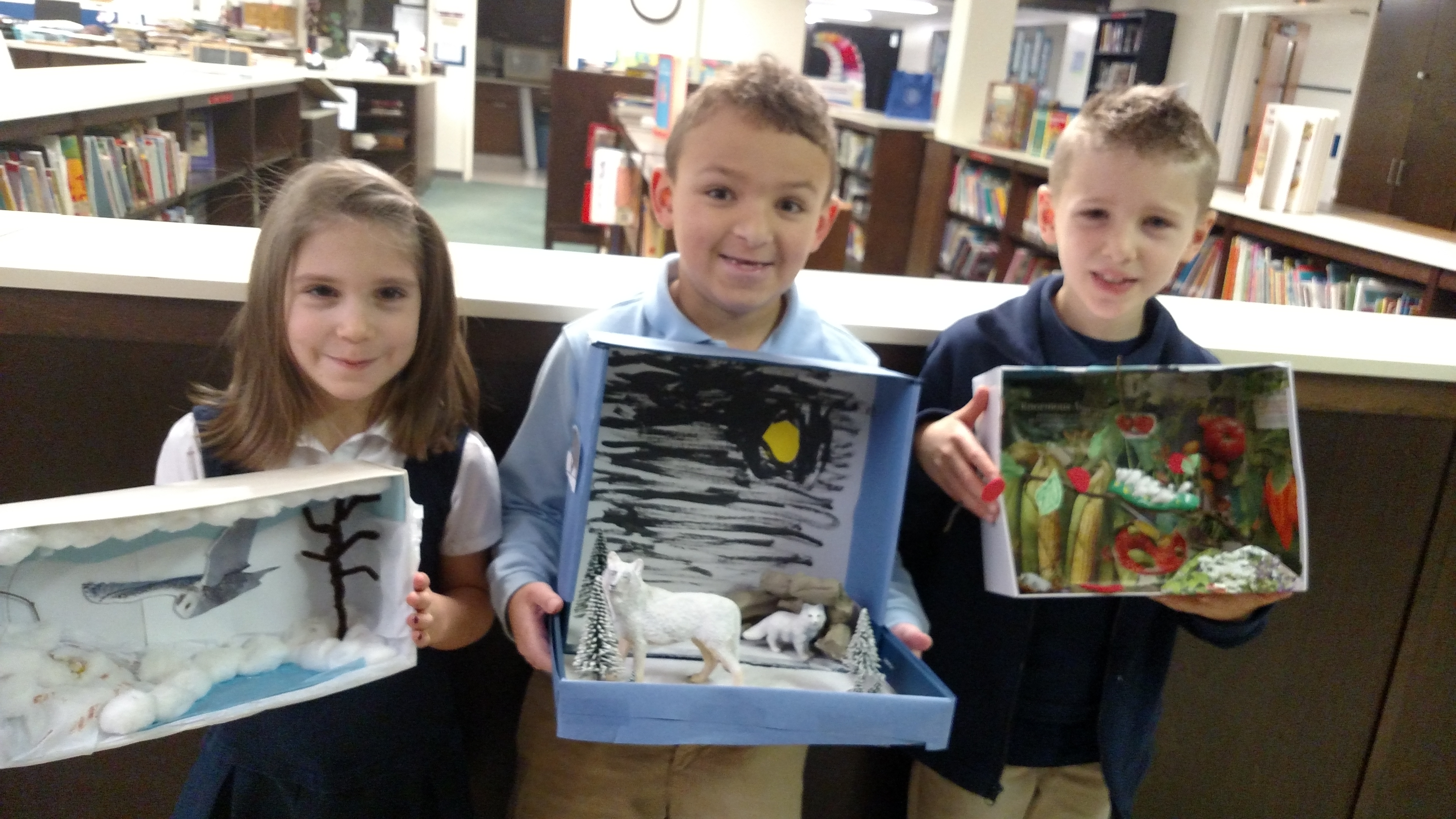 2nd grade animal habitat dioramas the eagle express